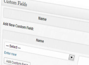 Como Utilizar Custom Fields no WordPress