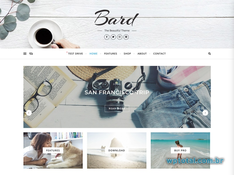 bard tema wordpress