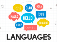 como alterar idioma do WordPress para português